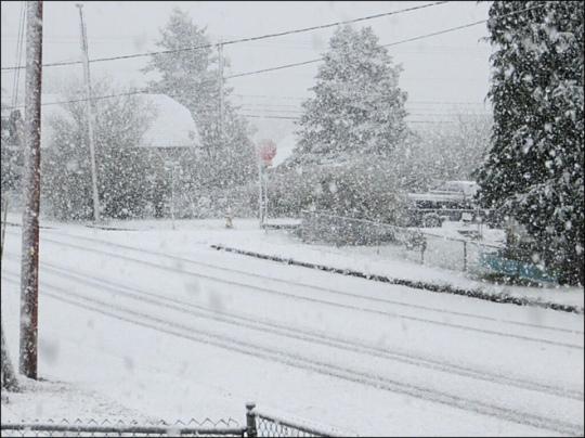 111022_snowy_day_10 (1)