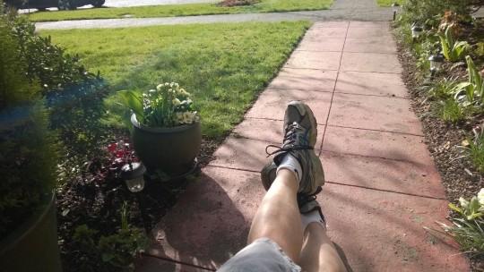 yard legs